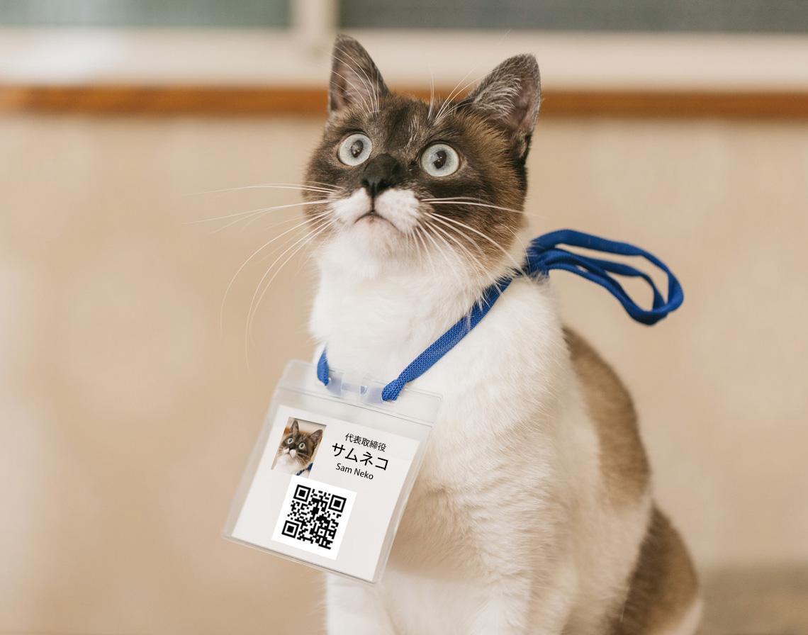 QRコードが表示されている名札、および社員証の画